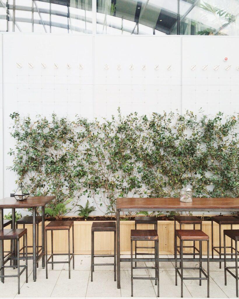 Muro verde o muro vivente: 8 motivi per cui dovresti averne uno in casa o in ufficio giardini verticali
