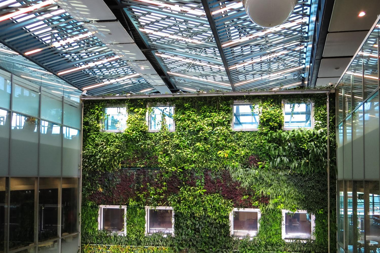 Muro verde o muro vivente: 8 motivi per cui dovresti averne uno in casa o in ufficio